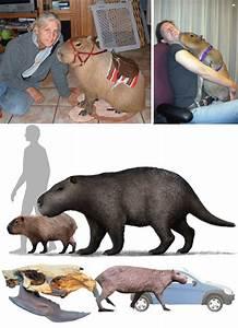 Monster Mash: 8 Giant, Earth-Shaking, Prehistoric Beasts ...