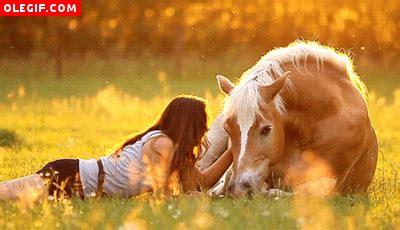gif mujer acariciando   caballo gifs