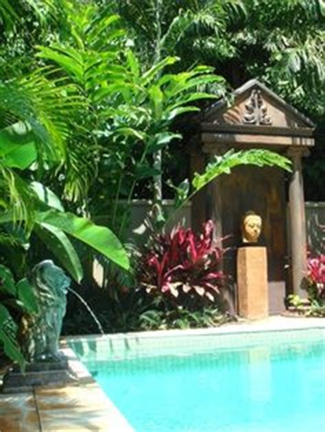 plants for around the pool area 1000 images about pool landscaping on pinterest pools pool landscaping and pool decks