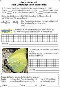 Maßstab Berechnen Grundschule : den ma stab selbst entdecken umrechnen ~ Themetempest.com Abrechnung