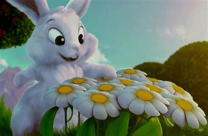 Bunny Easter Daisies