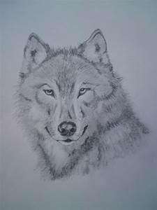 Wolf Face by blackrosetattoo on DeviantArt