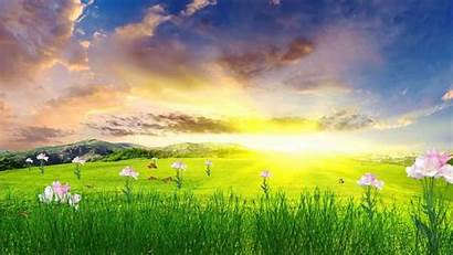 Spring Animated Happy Wallpapers Backgrounds Wallpaperaccess