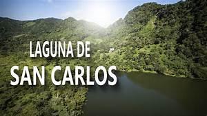 Panama  Laguna De San Carlos