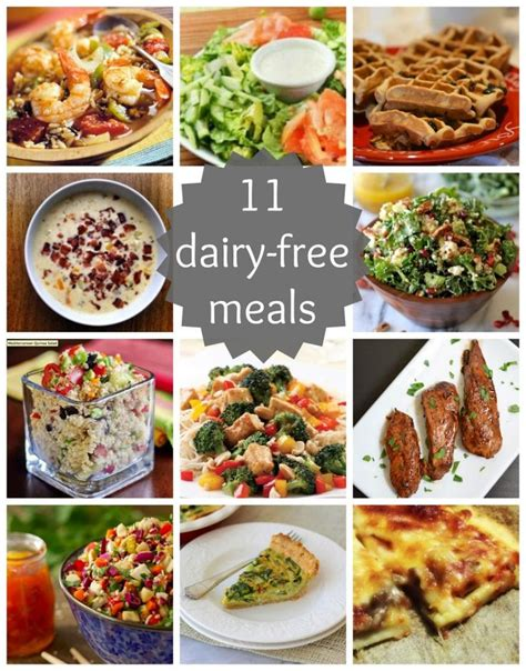great new recipes to try 11 dairy free meals for a healthier you these are some great recipes to try new years diet