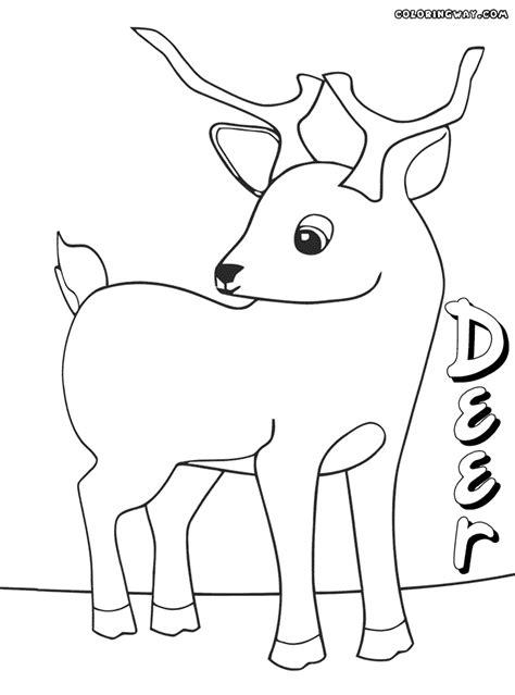 coloring page deer   printable deer coloring