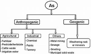 Various Sources Of Arsenic Into Paddy Field