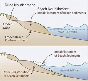 Restore Natural Coastal Buffers  Beach And Dune