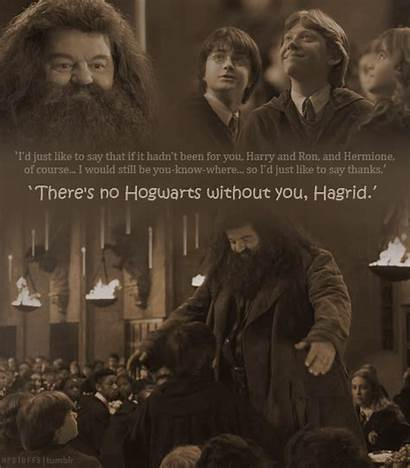 Harry Potter Hagrid Quotes Hogwarts Quotesgram Without