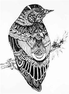 17 Best images about Fineliner art on Pinterest | Bird ...