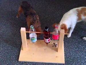 Hunde Intelligenzspielzeug Selber Machen : petautomaten youtube ~ A.2002-acura-tl-radio.info Haus und Dekorationen