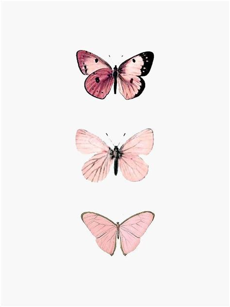 butterfly in 2020 butterfly wallpaper iphone