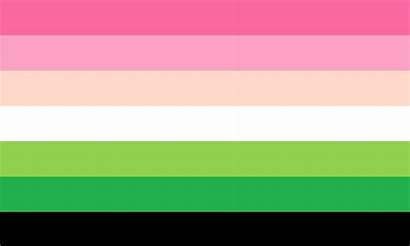 Flags Sexual Identity Complete Guide Pride Agender