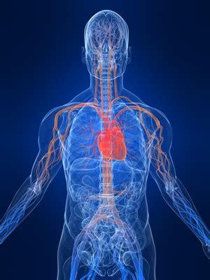 boost blood circulation manna health