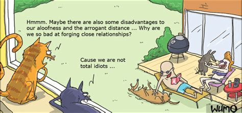 Cats Rethink Their Arrogance !! Wumo Comic