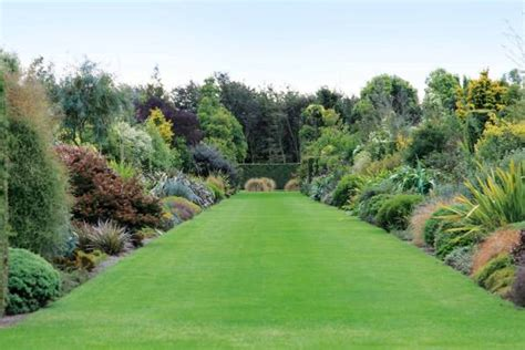 How To Create A Classic English Garden Using Nz Natives