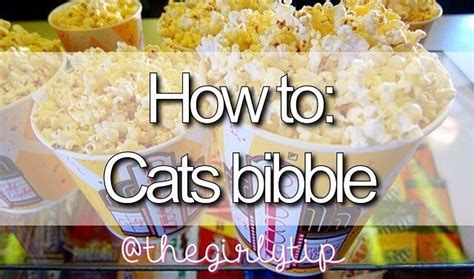 How To Make Cats Bibble 💁