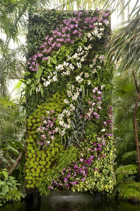 blanc vertical gardens pinterest discover and save creative ideas