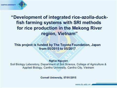 azolla rice duck fish farming systems  sri