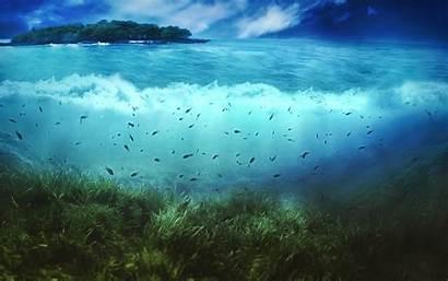 Sea Deep Wallpapers Wallpapertag
