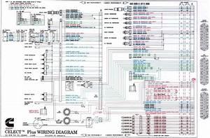 Freightliner Fan Clutch Diagram