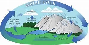 Mr  Joe U0026 39 S Class Mbm  The Water Cycle