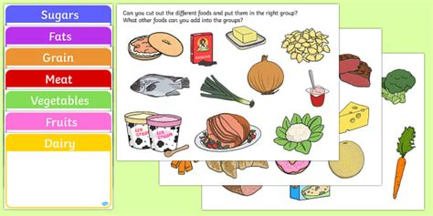 food group sorting activity food food groups matching