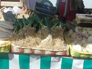Rangement Fruits Et Légumes : rangement fruits et l gumes en papier journal eco vannerie ~ Melissatoandfro.com Idées de Décoration