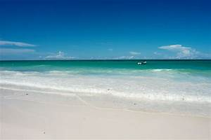 List of Indian Ocean, ocean sea, ocean creatures, ocean ...  Sea