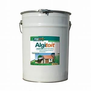 Peinture Pour Toiture : algimous peinture pour toiture algitoit 20 kg coloris ~ Melissatoandfro.com Idées de Décoration