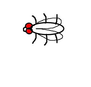 mosca desenho de digopaz gartic