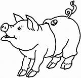 Pig Coloring Printable sketch template
