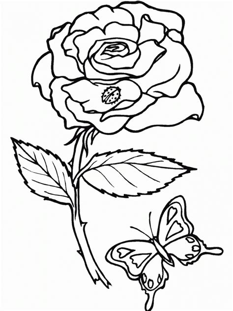 Coloring Roses by Free Printable Roses Coloring Pages For