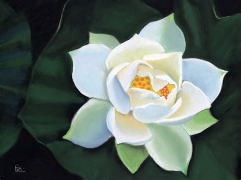 lotus flower painting ria hills