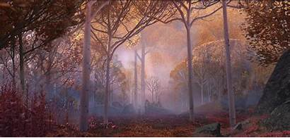 Frozen Forest Enchanted Ii Scenes Arendelle Beauty