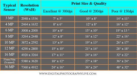 megapixels  print size  big   print