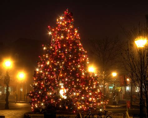awesome picture of christmas tree lighting lottery