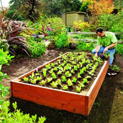 raised garden beds home depot gardening home design