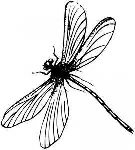 Public Domain Clip Art Insects