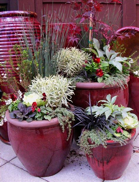 Ravenna, Container Garden And Seattle On Pinterest