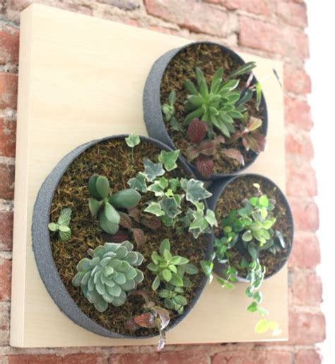 Vertical Succulent Garden Indoor by 11 Cool And Easy Diy Deck And Patio Privacy Screens