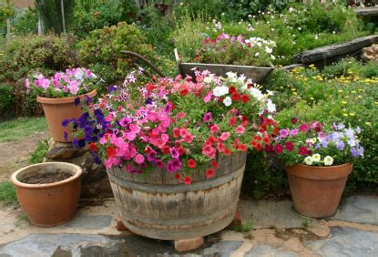 Why Grow A Patio Garden. Patio Umbrellas Sale Menards. Porch Swing Cushions Canada. Restaurant Patio Furniture San Diego. Glass Patio Table And Chairs. Outdoor Furniture Woodworking Plans Free. Patio Furniture North Austin. How To Decorate My Covered Patio. Target Ordway Patio Furniture