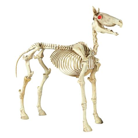 home accents holiday   halloween standing skeleton