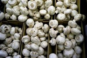 Comment Cultiver Des Champignons : comment faire pousser des champignons de paris la maison ~ Melissatoandfro.com Idées de Décoration
