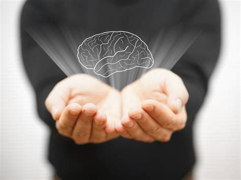 stress brain wiring empathy  morality wake  world