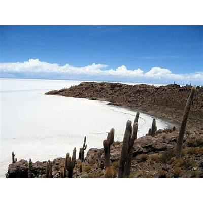 File:Isla de Pescado Bolivia Salar Uyuni 2.jpg