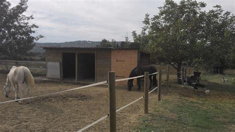 creation de cuisine boxes pour chevaux foin sellerie