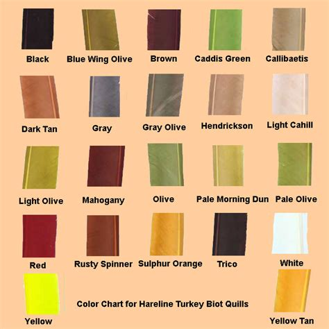 color chart hareline turkey biot quills