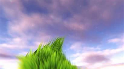Animated Animation Grass Scene Wallpapers Desktop Anime