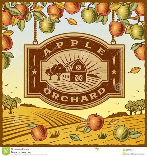 apple orchard illustration apple orchard stock photo image 26773150